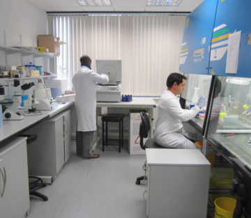 Bí mật nơi phòng xét nghiệm ADN – Đứa con ngoài ý muốn