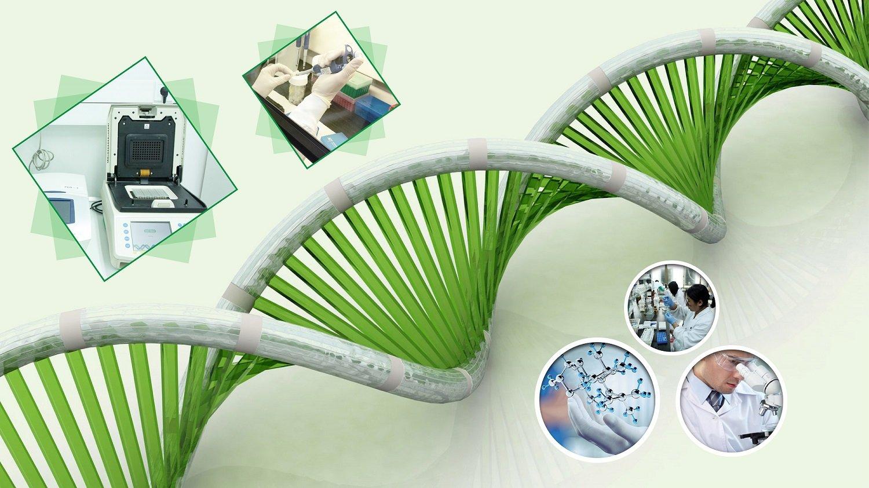 Dịch vụ phân tích ADN