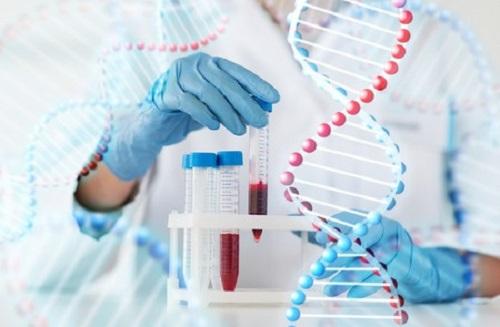 Xét nghiệm ADN để xác định huyết thống là dịch vụ hiệu quả nhất hiện nay